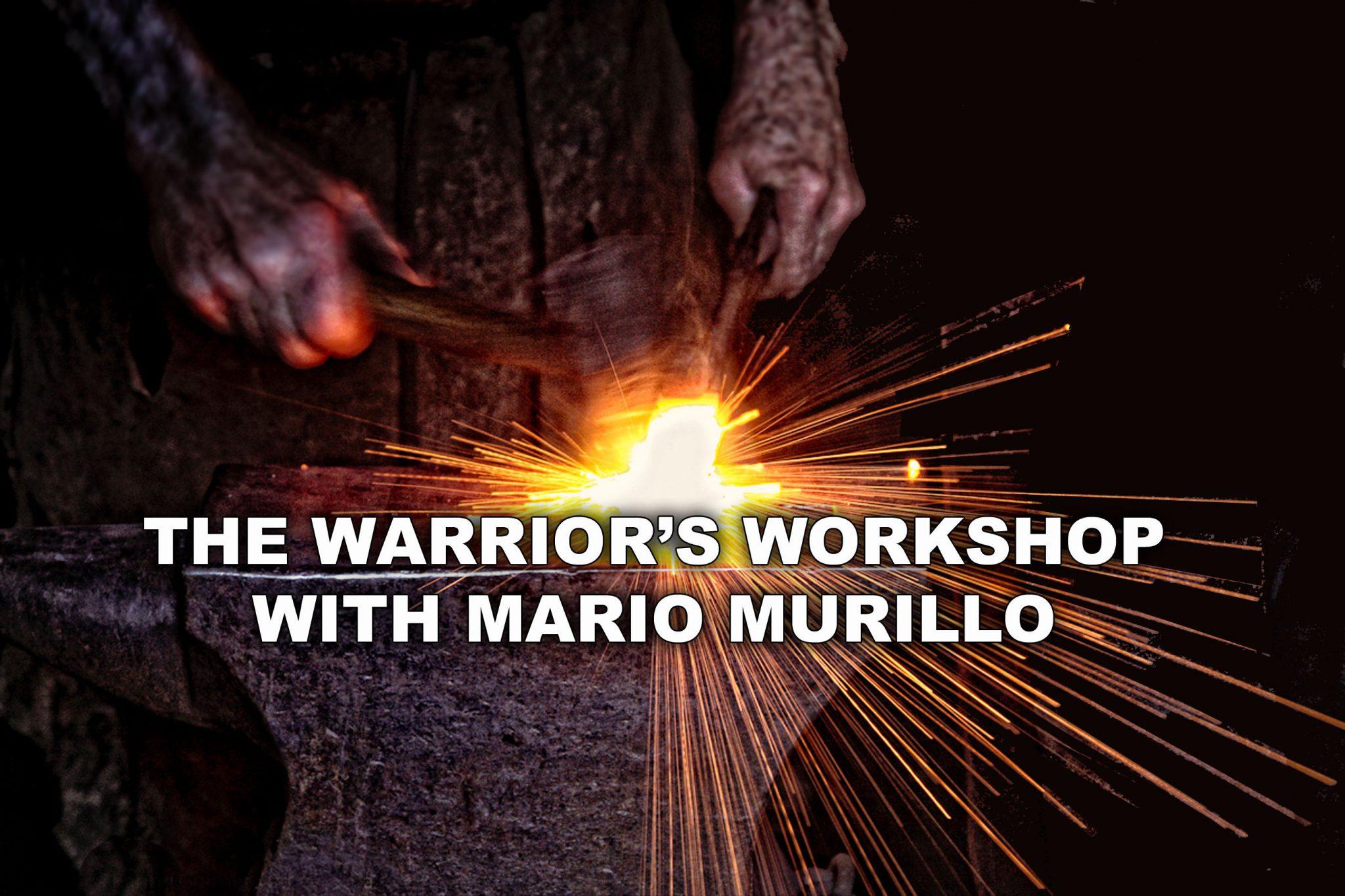 Warrior Workshop DVD Set